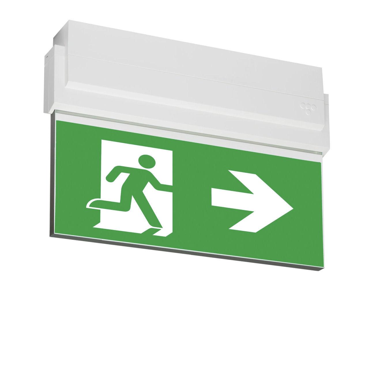 Световые указатели эвакуационного выхода ESC-80 Teknoware