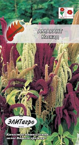 Семена Цветы Амарант Каскад