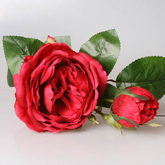 Роза пионовидная бордо, 3-570