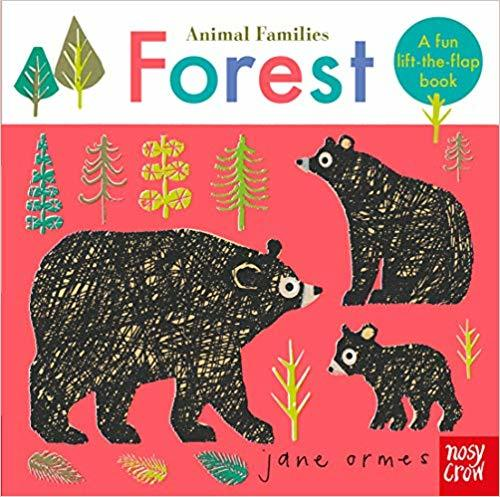 Kitab Animal Families: Forest   Jane Ormes