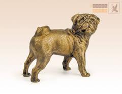 Собака Мопс большой