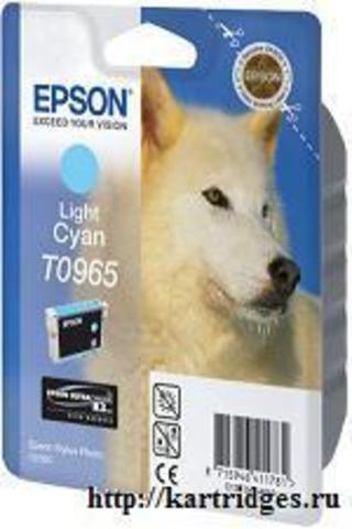 Картридж Epson T09654010
