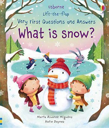Kitab What is Snow?   Katie Daynes