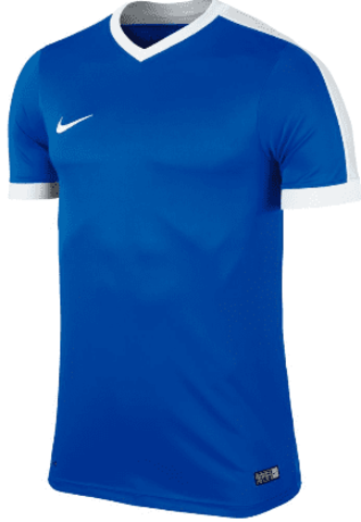 Футболка Nike Striker IV 725892 | 725974 (463)