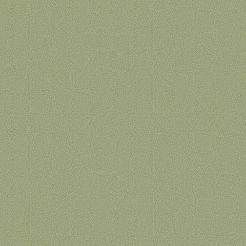 Обои Cole & Son Landscape Plains 106/2026, интернет магазин Волео