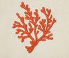 Полотенце 110х150 Old Florence Corallo с коралловой вышивкой бежевое