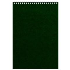 Блокнот на спирали А4 60л. зелен.картон д/лог.клет.14ш