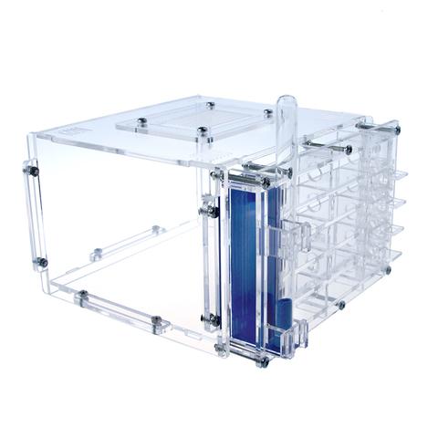 Crystal L 2.0 + Messor Structor