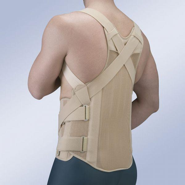 Корректоры осанки и корсеты для грудного отдела Жесткий грудопоясничный корсет с термопластиком Orliman TLSO-B TLSO__1__enl.jpg