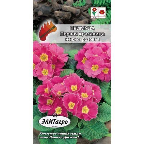 Семена Примула Первая красавица нежно-розовая, Мнг