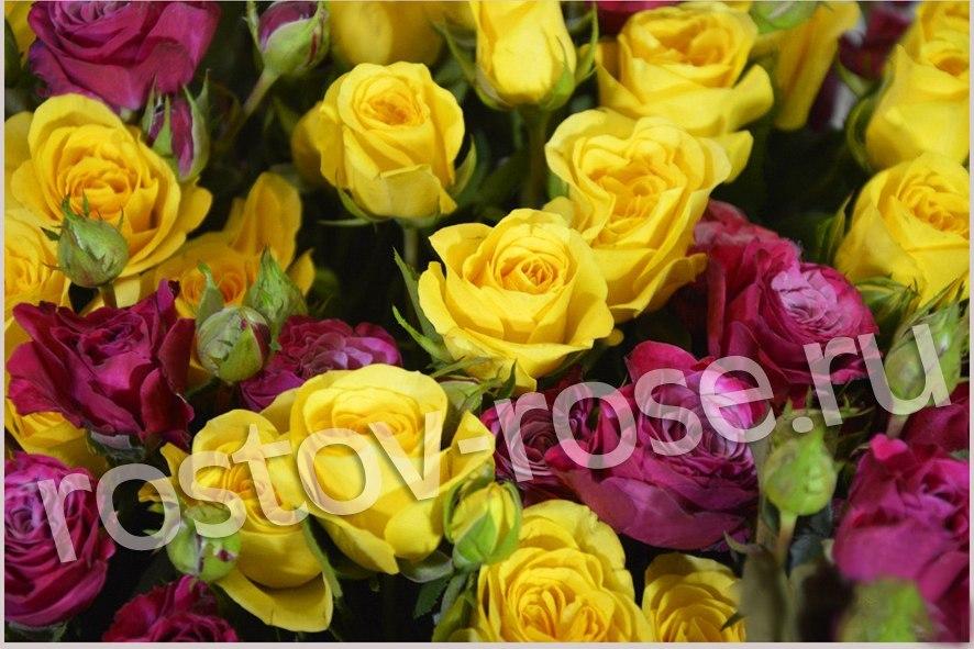 Букет кустовых роз Пальмадор и Кайли