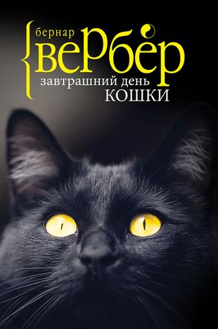 Фото Завтрашний день кошки