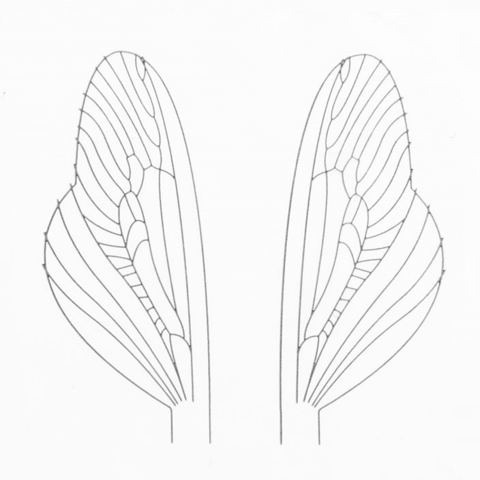 Материал для крыльев J:son&Co Realistic Wing Material Terrestrial (30 пар)