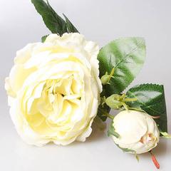 Роза пионовидная белая, 3-568