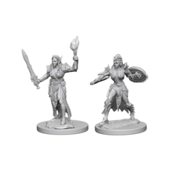 Pathfinder Deep Cuts Unpainted Miniatures - Elf Female Fighter