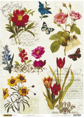 Рисовая бумага для декупажа Ботаника, А3
