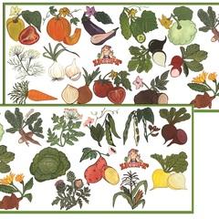 Развивающий набор наклеек:  Полезные овощи