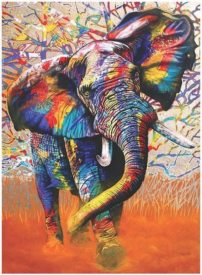 Картина раскраска по номерам 40x50 Разноцветный слон ...