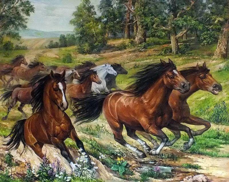 Картина раскраска по номерам 50x65 Забег лошадей– купить в ...