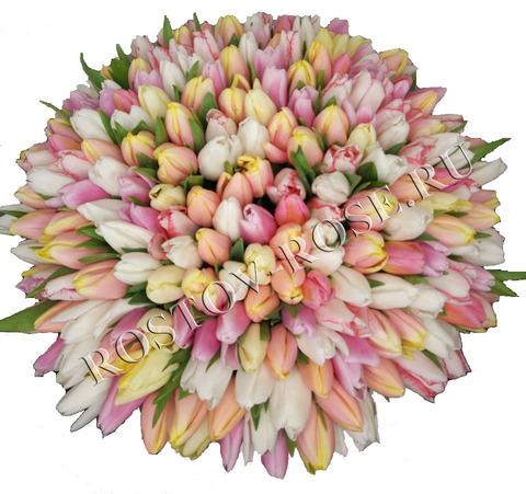 Бело-желто-розовый микс из тюльпанов