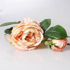 Роза пионовидная кремовая, 3-569