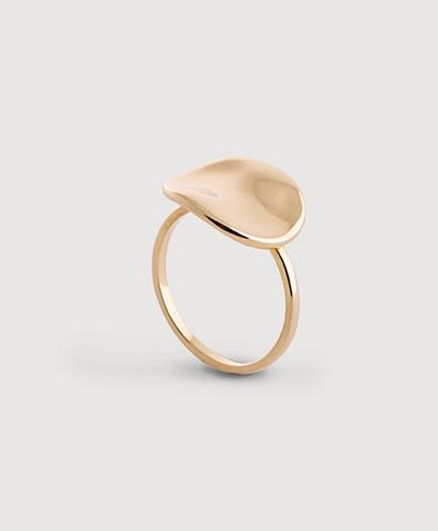 Золотое кольцо Галька