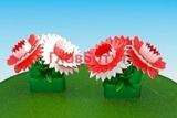 Надувные гвоздики (букет)