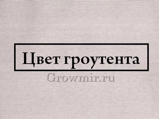 homebox-ambient цвет гроутента  Growmir гроумир гровмир купить в москве копия