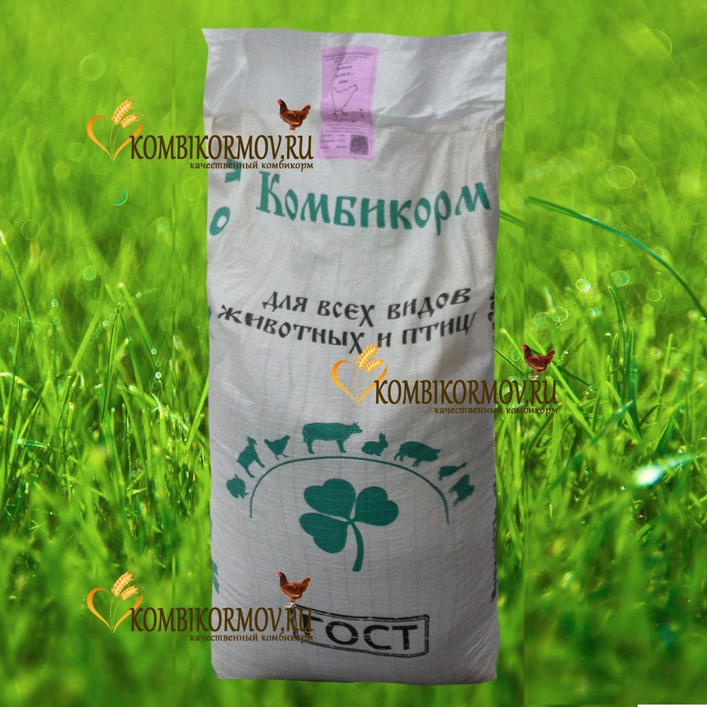 Комбикорм для кур несушек ПК-1-1. Баланс