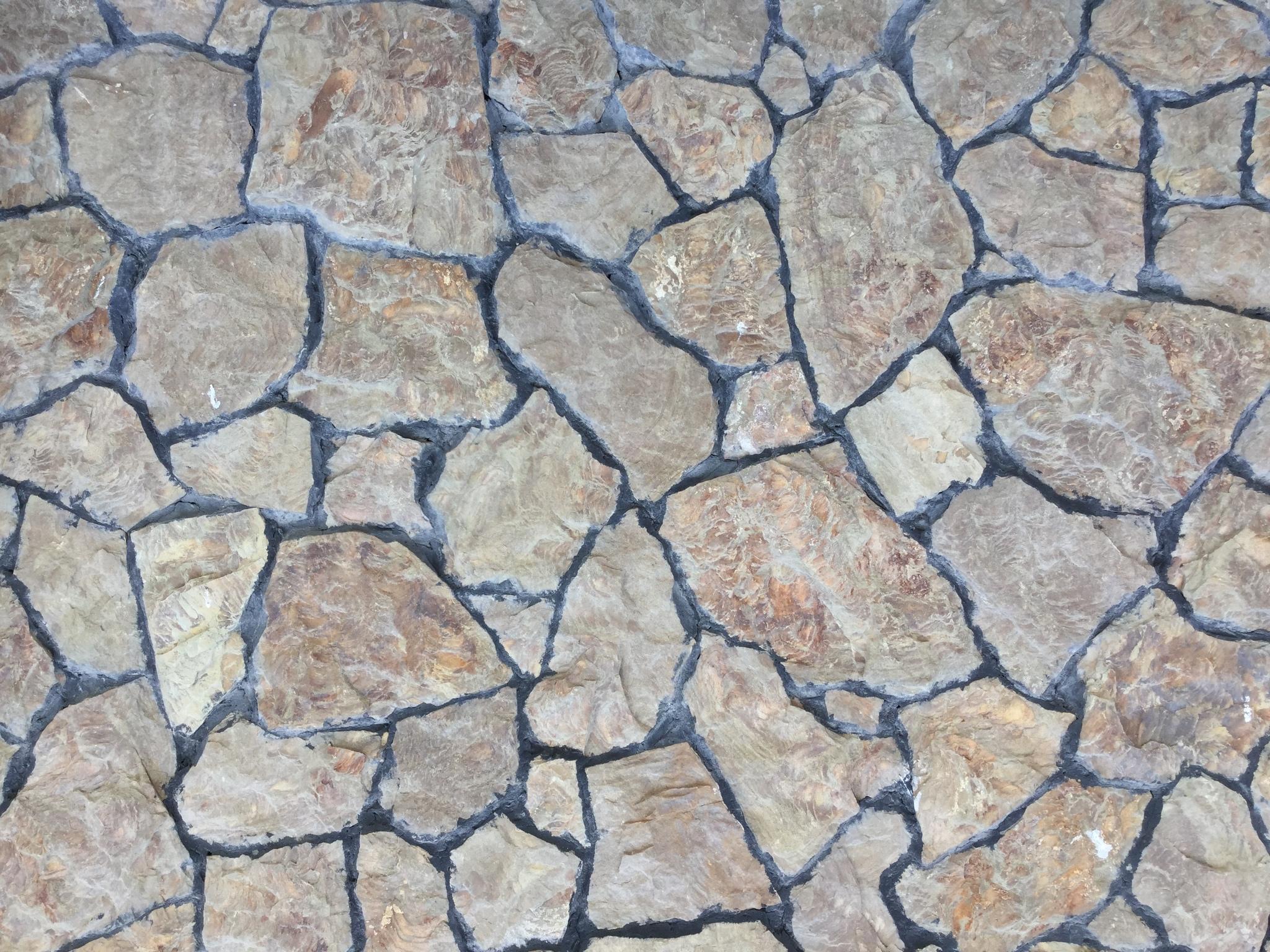 дракон песчаник облицовка