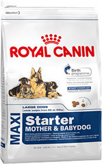 Royal Canin Starter Maxi Puppy