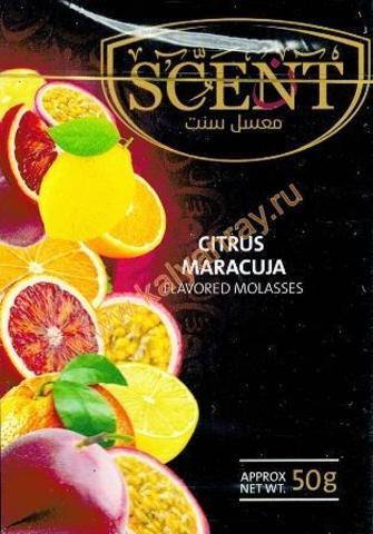 Табак Scent Citrus Maracuja