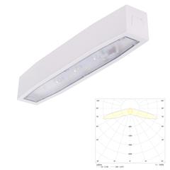 Потолочный светильник аварийного освещения эвакуационных путей Suprema LED SС NT IP54 Intelight