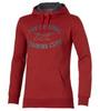 Мужская толстовка Asics Graphic Hoodie (125093 6013) красная