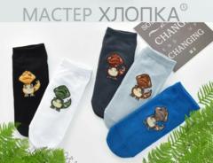 Носки для мальчиков  ( 5 пар) арт. СА7000-5 (р. 1-3 )