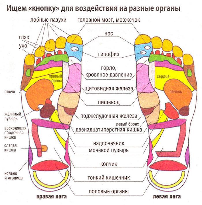 Через биологически активные точки можно воздействовать на весь организм