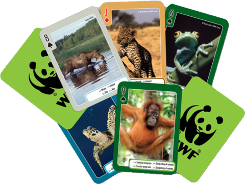 Игральные карты 54 штуки WWF