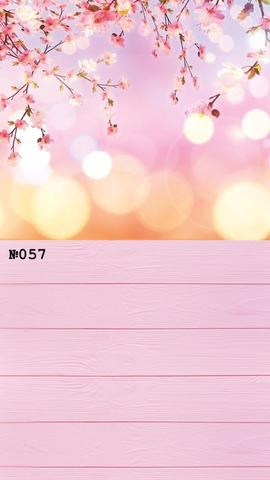 Фотофон виниловый стена-пол «Сакура» №057
