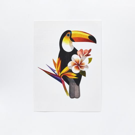 Переводная татуировка Toucan