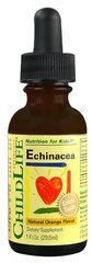 Childlife Echinacea Orange -- 1 fl oz