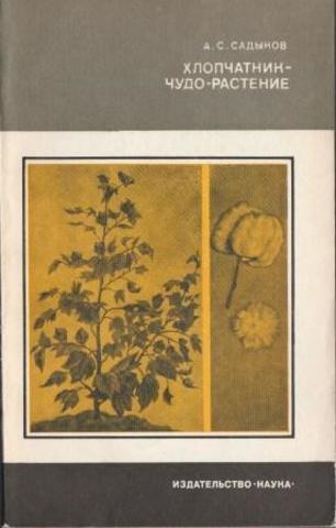 Хлопчатник- чудо-растение