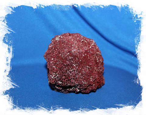 Красный органчик 10-11 см