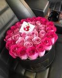 Элитные 33 розовые розы в подарочной коробке