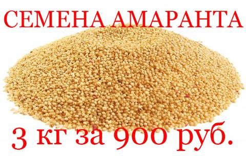 АКЦИЯ семена амаранта 3 кг за 900 руб.