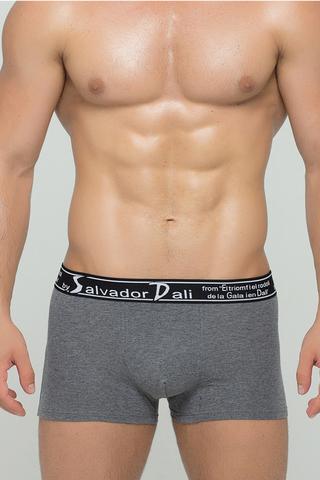 Мужские трусы 2024 Grey Salvador Dali