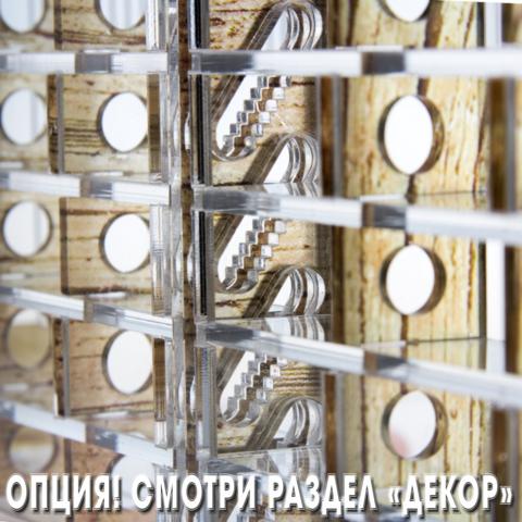 Crystal XL 3.0 + колония Camponotus nicobarensis