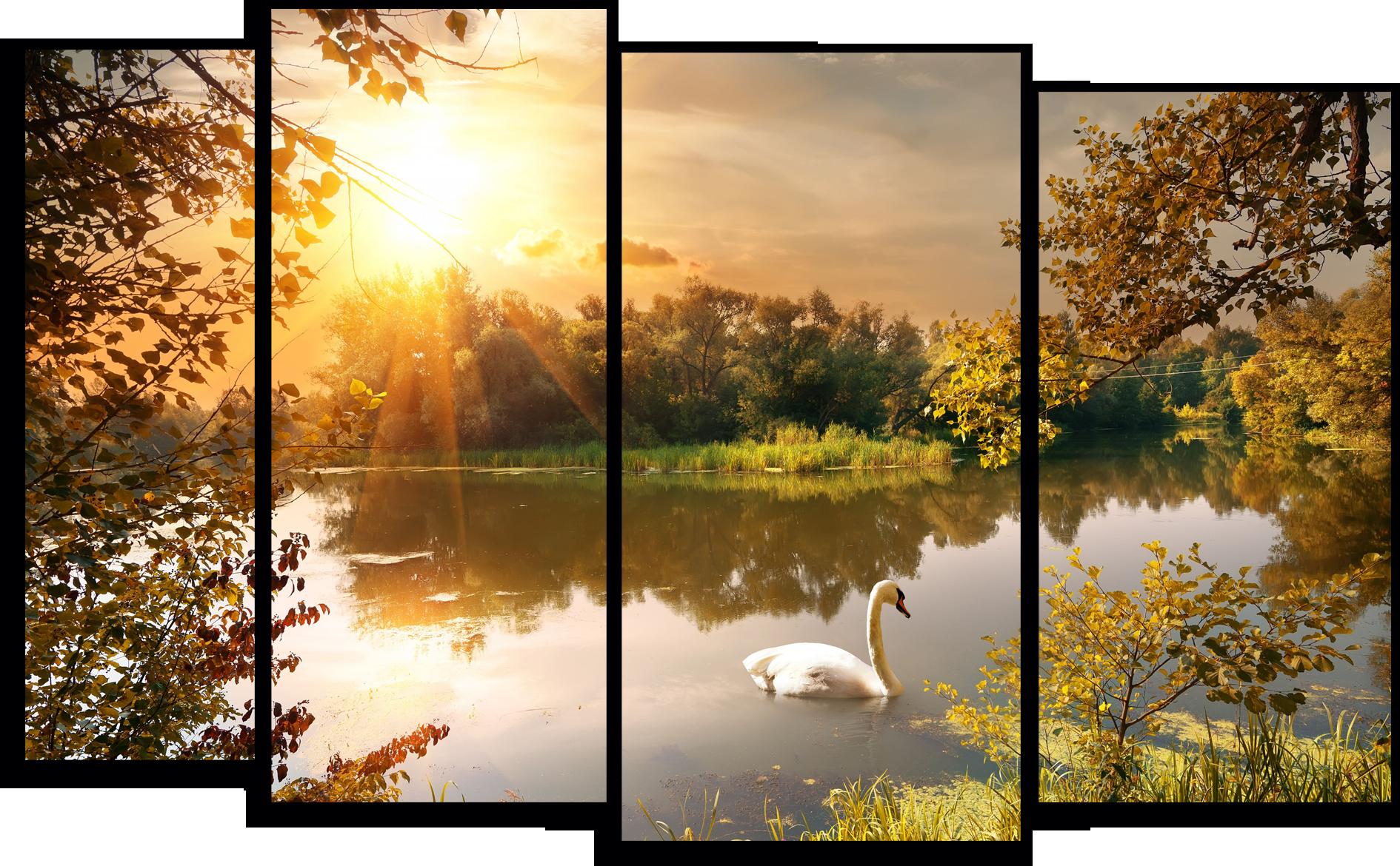 """Природа Модульная картина """"Белый лебедь"""" М754.png"""
