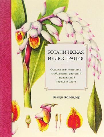 Фото Ботаническая иллюстрация