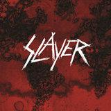 Slayer / World Painted Blood (LP)