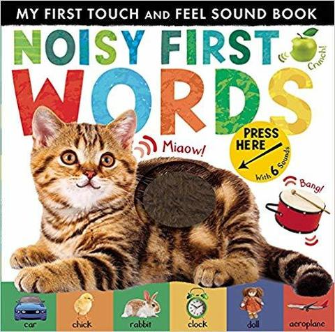 Noisy First Words : My First Touch and Feel Sound Book